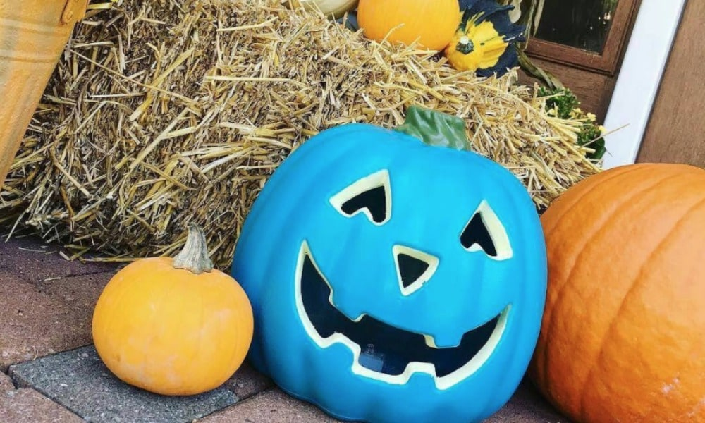 Why you might see teal pumpkins at Aussie homes this Halloween