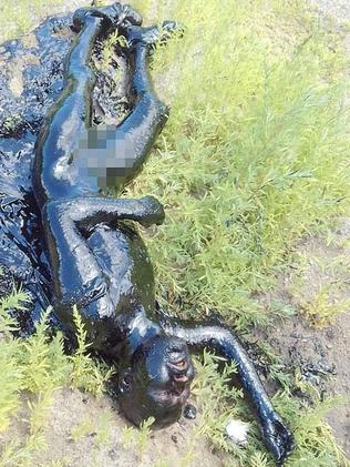 Harrowing photos show the victim moments after he's dragged from a pool of tar in Russia. Picture: VK