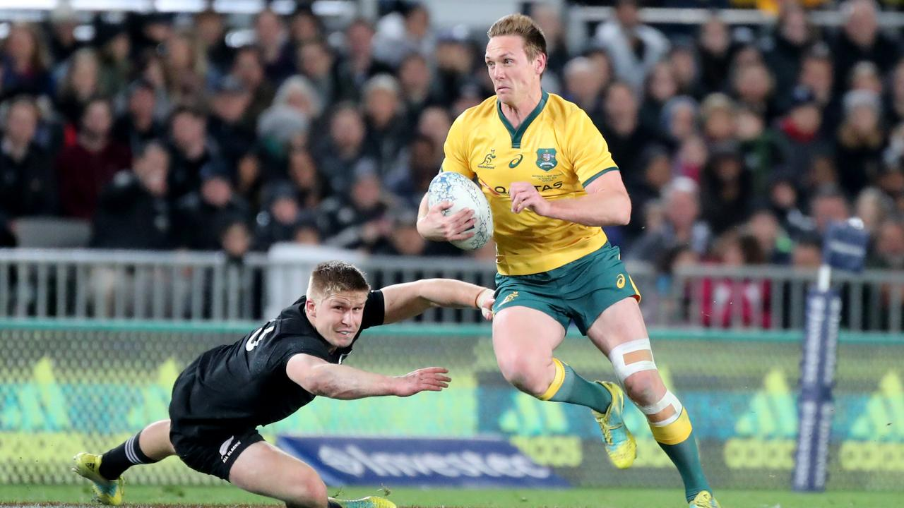 "Cameron Shepherd believes Dane Haylett-Petty has the attributes to be a ""great"" fullback for the Wallabies."