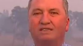 Barnaby Joyce compared to Israel Folau over bushfire comments