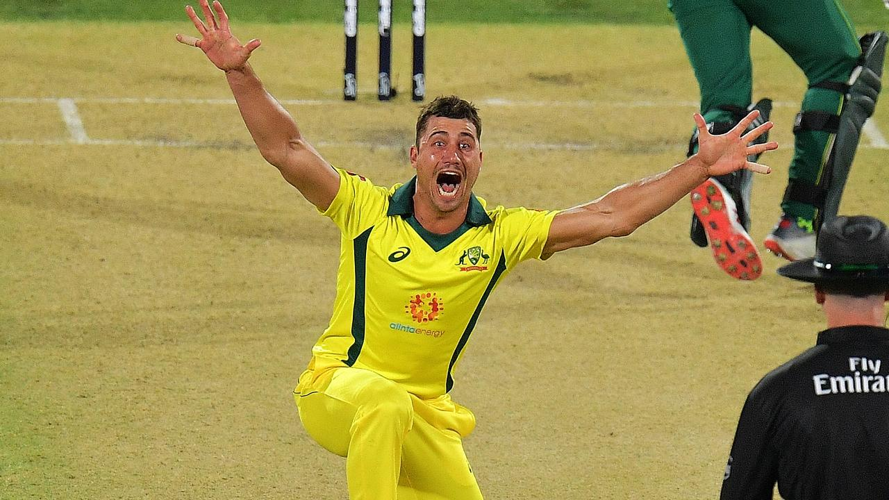 Mark Waugh believes Marcus Stoinis should be fast tracked into the Test XI.
