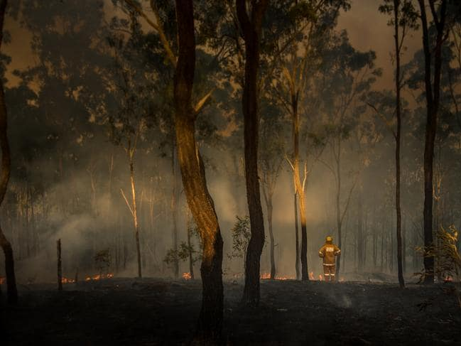 A loan Australian rural firefighter observes the damage caused by bushfires in Queensland.