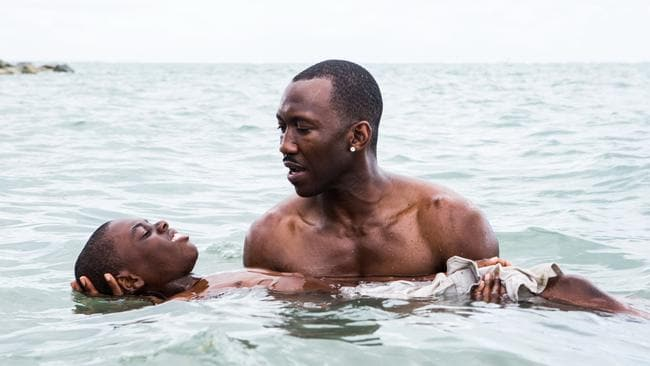 Moonlight is the perfect film.