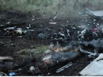 Victims' bodies among the wreckages of MH17. Picture: AFP