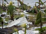 "A photo taken on September 6, 2017 shows destroyed palm trees, outside the ""Mercure"" hotel in Marigot, on the Bay of Nettle, on the island of Saint-Martin in the northeast Caribbean, after the passage of Hurricane Irma. Picture: AFP PHOTO / Lionel CHAMOISEAU"