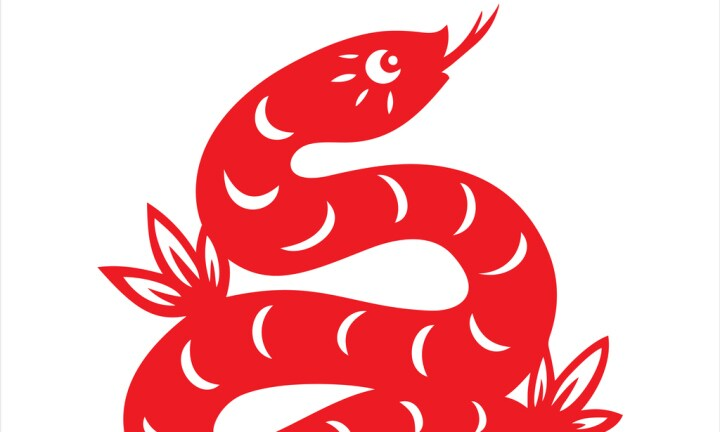Snake, year of the snake, zodiac, chinese zodiac sign
