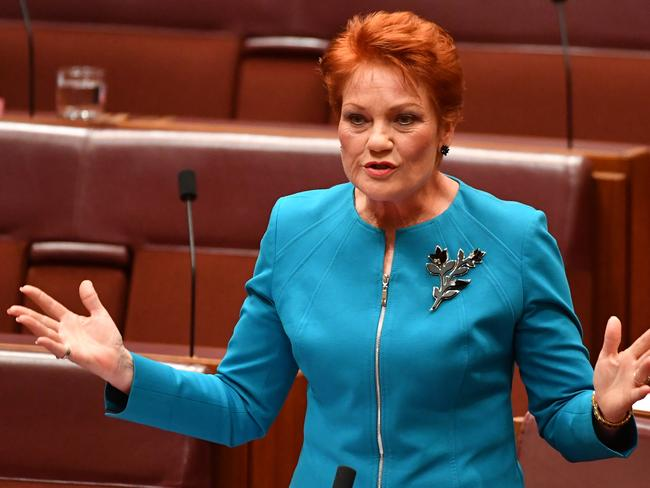 One Nation leader Pauline Hanson says the tactics are typical Labor bullying. Picture: ALP