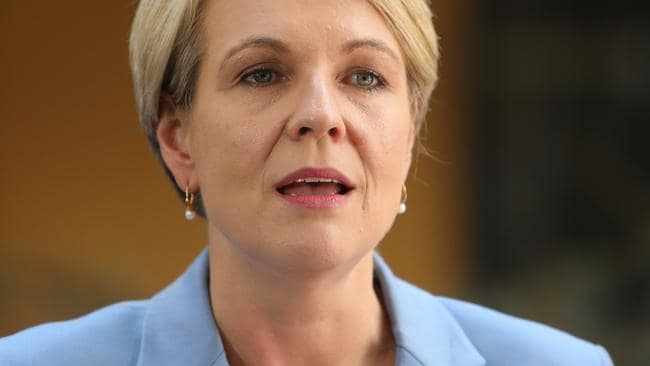 Deputy Opposition Leader Tanya Plibersek. Pic: Tim Hunter