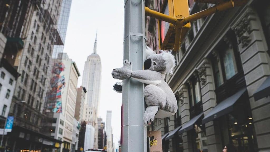 Balenciaga Australia Bushfire Disaster Koala Hoodie & T
