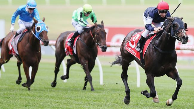 The Taj Mahal gave trainer Robert Hickmott a feature win on his last day as head trainer for Macedon Lodge.