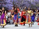 Bollywood dancers. Photo Naomi Jellicoe
