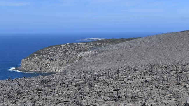 Flinders Chase National Park after bushfires swept through on Kangaroo Island, southwest of Adelaide, Tuesday, January 7, 2020. Picture: AAP /David Mariuz