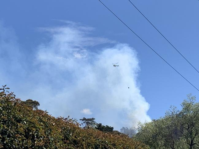A water bombing helicopter fights a bushfire at Glenlusk near Collinsvale. Picture: CAMERON WHITELEY