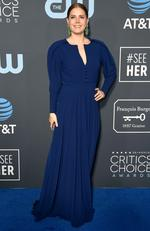 Amy Adams attends the 24th annual Critics' Choice Awards at Barker Hangar on January 13, 2019 in Santa Monica, California. (Photo by Frazer Harrison/Getty Images)