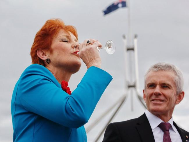 Pauline Hanson toasts Donald Trump to victory outside Parliament House. Picture: ABC/Twitter