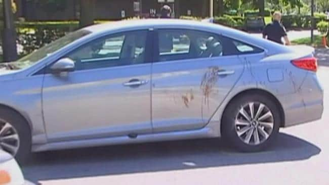 Grant Nelson's car was found covered in blood. Picture: WGN