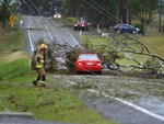 Downed trees and powerlines at Gympie.