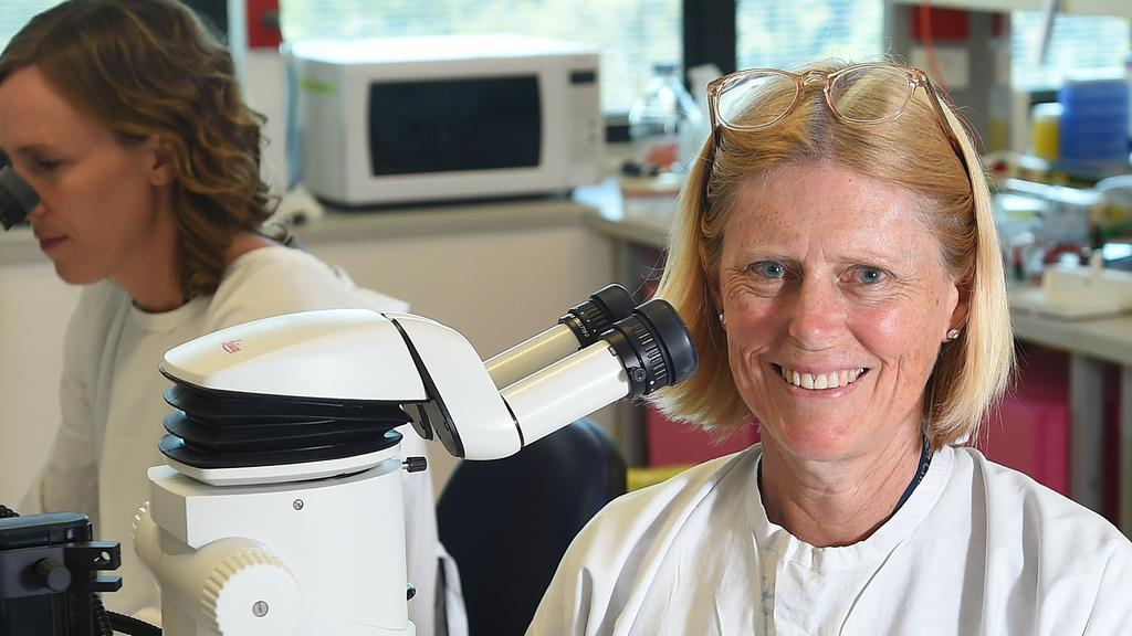 Stem cell clinical trials part of new groundbreaking