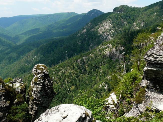 North Carolina's rugged Pisgah National Forest, where Judy's body was found. The site is almost 1000km away from Philadelphia, where she was last seen