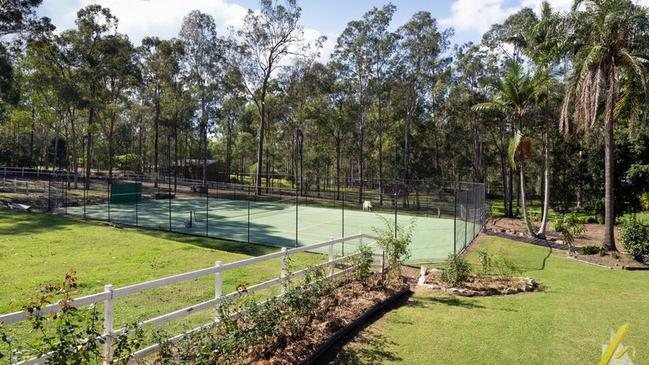 The tennis court surrounded by greenery.