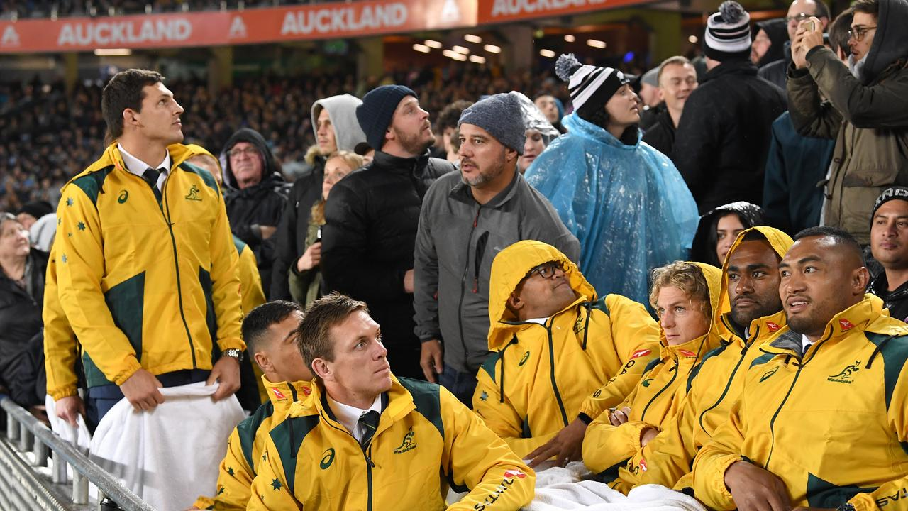 Wallabies after a projectile was thrown near them by a spectator at Eden Park in Auckland.