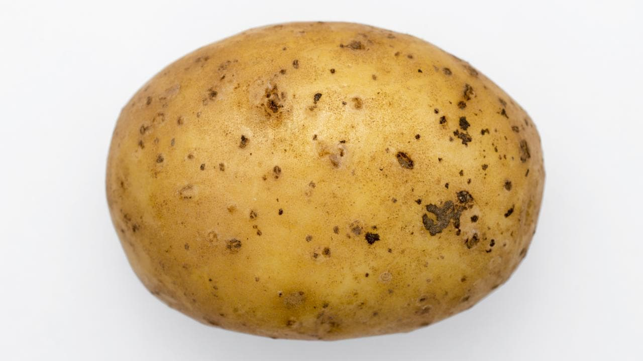 Image result for spud