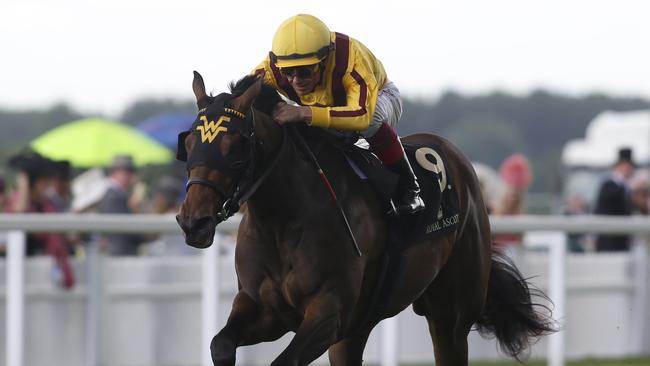 US speedster Lady Aurelia will be hard to beat in the King's Stand Stakes. Picture: Getty Images