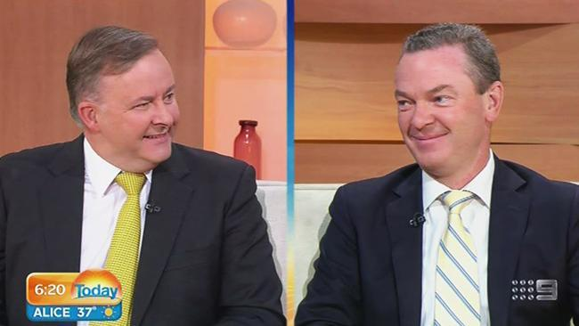 Albo taunts Pyne over looming leadership spill