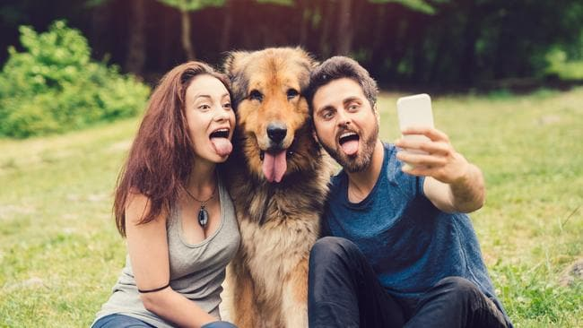 Get snapping to enter your dog in our search for Australia's Top Dog. Picture: iStock