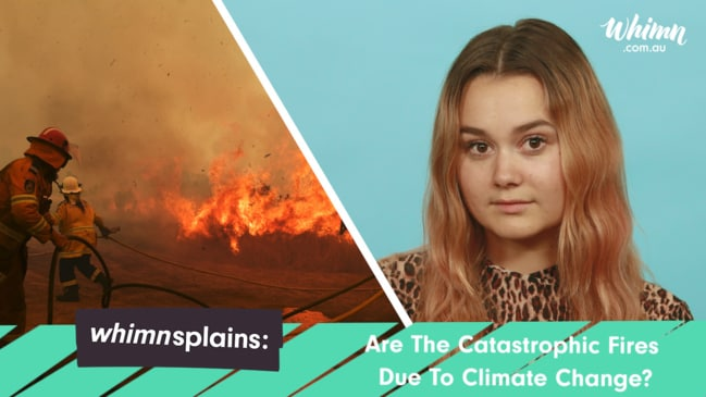 whimnsplains: Are The Catastrophic Fires Due To Climate Change?