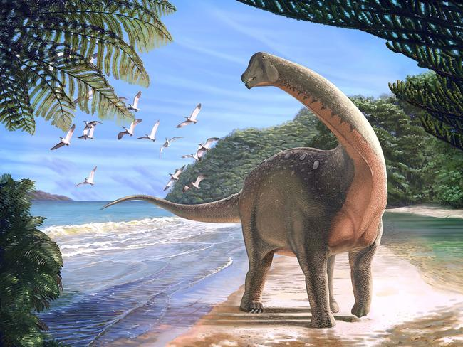 A Mansourasaurus shahinae on a coastline in what is now the Western Desert of Egypt approximately 80 million years ago. Picture: Andrew McAfee