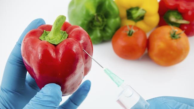 Genetically engineered food essay