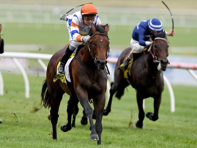 Vinland wins at Sandown. Picture: Joe Castro/AAP