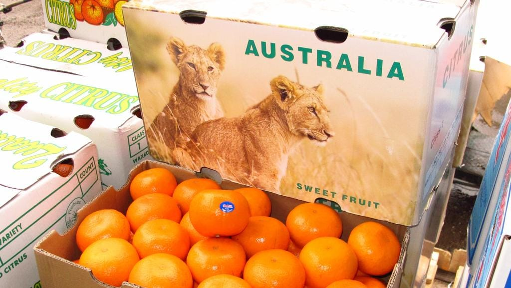Chinese fruit being relabelled as Australian in bid to cash