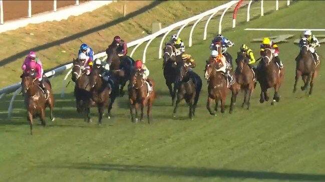TAB market update - Gosford Gold Cup