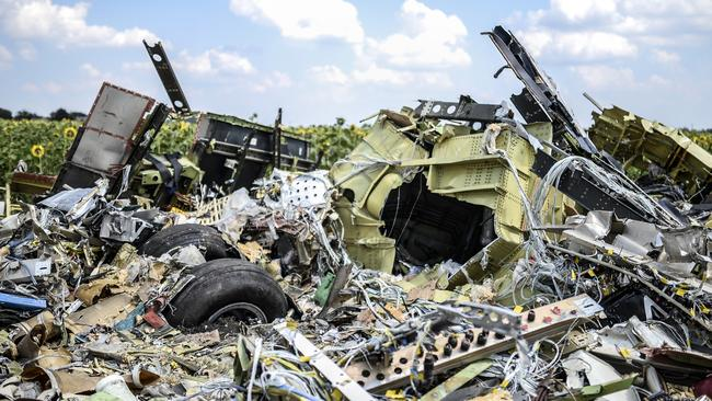 A photo taken on July 23, 2014 shows the crash site of the downed Malaysia Airlines flight MH17. Picture: AFP.