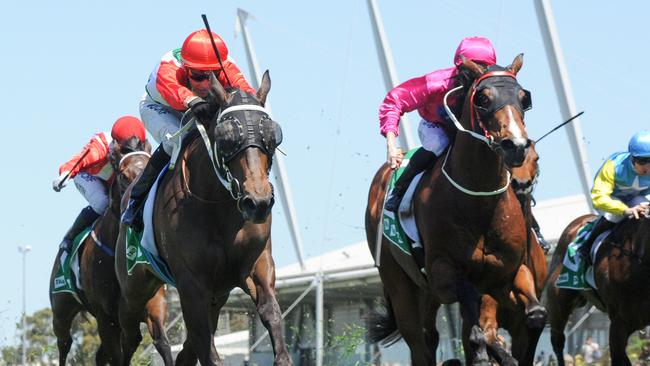 Handle The Truth (left) is coming off a TAB Highway win at Rosehill back in November. Picture: AAP