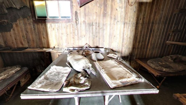 The hut even has a dead penguin on the table. Picture: Google Maps