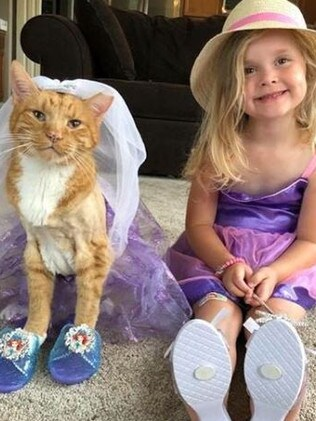 Bailey was very tolerant and loved playing dress-ups. Source: Instagram/Bailey No Ordinary Cat
