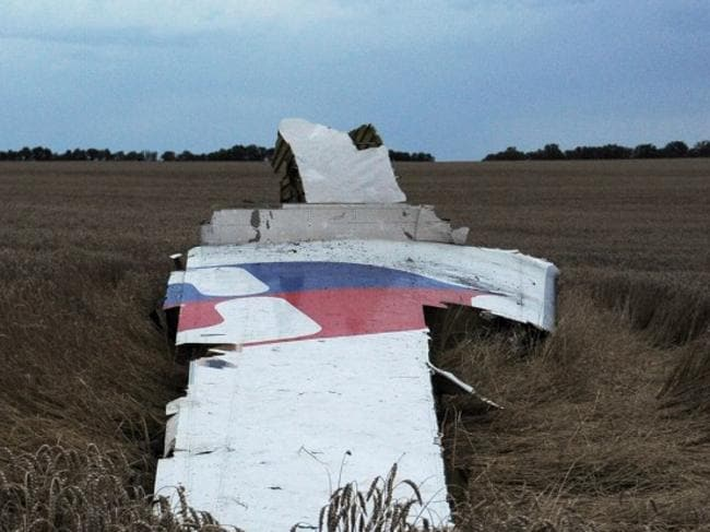 Debris ... the wreckage of the Malaysian airliner carrying 295 people from Amsterdam to Kuala Lumpur after it crashed, near the town of Shaktarsk.