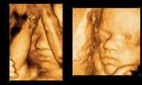 Babies can recognise faces from inside the womb, new study says