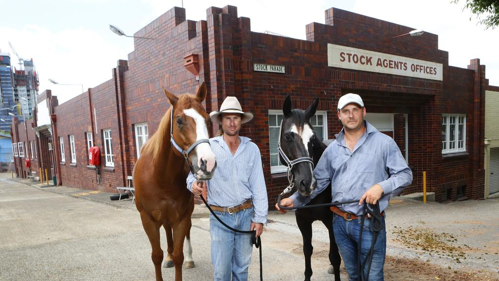 Rna Showgrounds Horse Trainers The Courier Mail