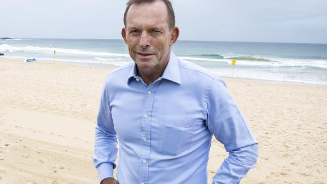 Tony Abbott at Manly Beach. Picture: John Feder/The Australian