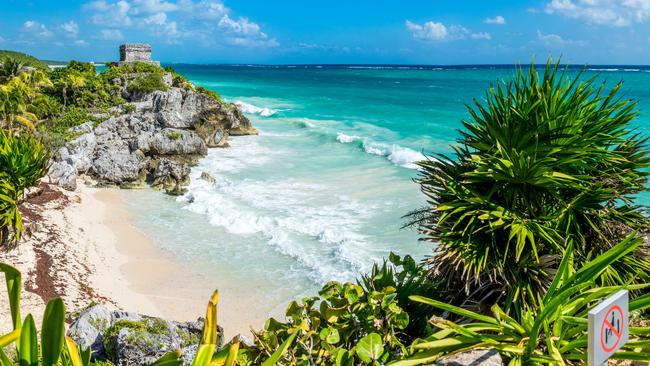 Tulum: Beaches ruined by rotten seaweed along pristine