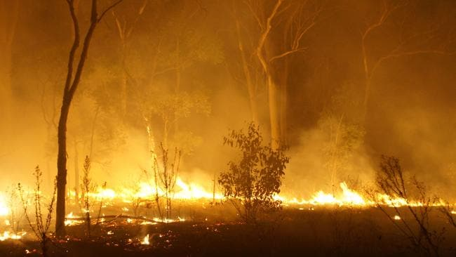 A deliberately lit fire in Long Point, NSW. Picture: NSW Rural Fire Service