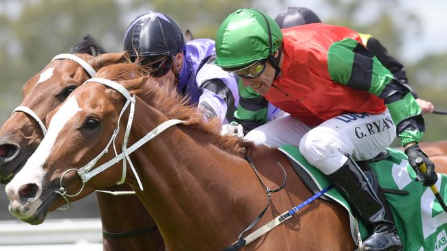 Greg Ryan rarely misses out on riding a winner or two at Wellington. Picture: AAP