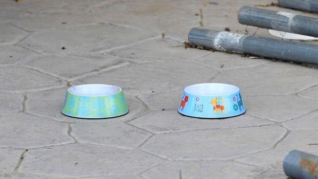 Two Disney-themed dog bowls were pictured in their yard, though it is not clear whether they had animals. Picture: Stewart Cook/The Sun
