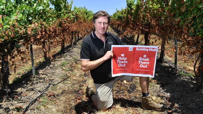 Darren Golding in the Golding Wines vineyards in Lobethal. Picture: AAP/ Keryn Stevens
