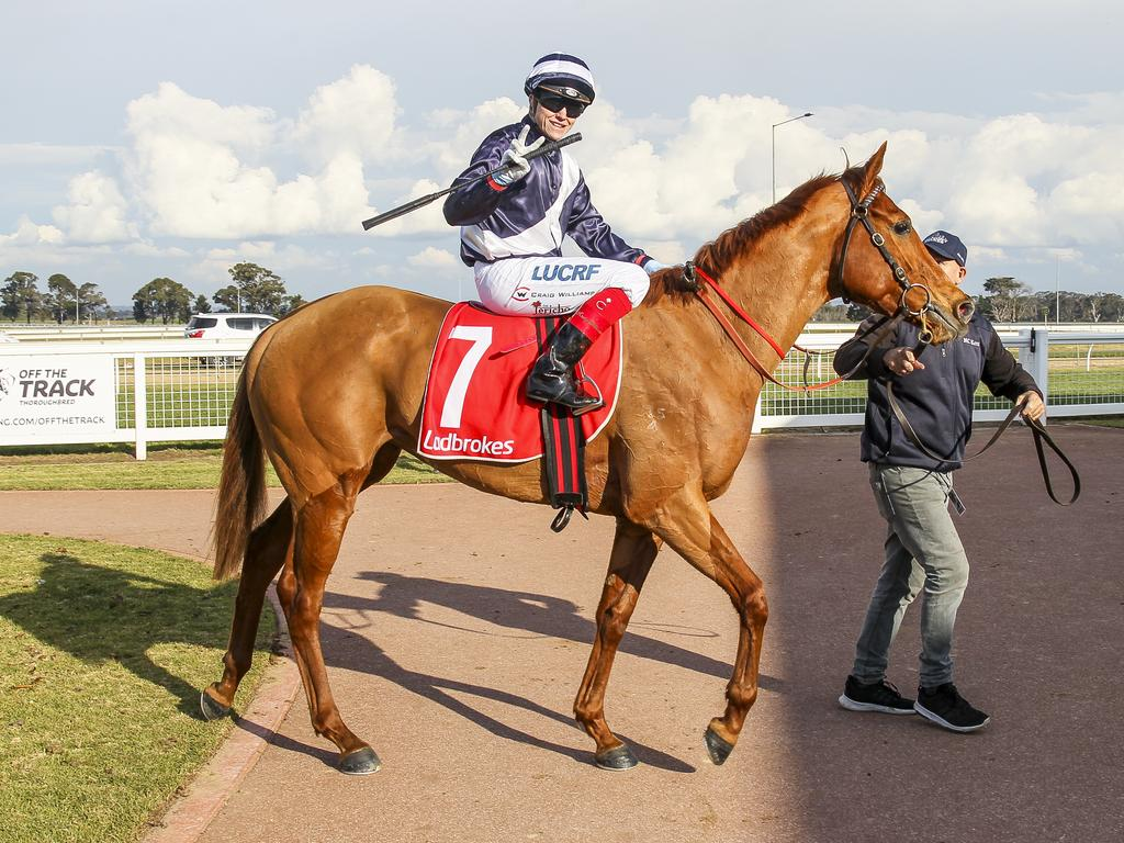 Miss Pandanus was a promising racehorse.