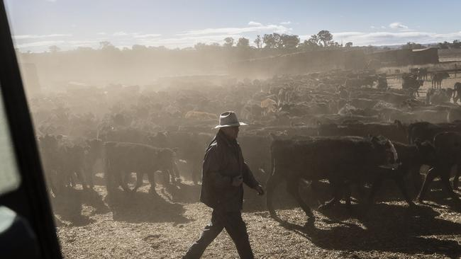 Droughts affect farmers but also the entire community they live in. Picture: Brook Mitchell/Getty Images